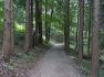 자연과 사람이 공존하는 도심 속 휴식 공간, 부산 구봉산 치유숲길
