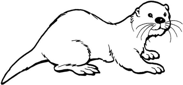 webkinz sea otter coloring pages | Otter coloring 수달 색칠